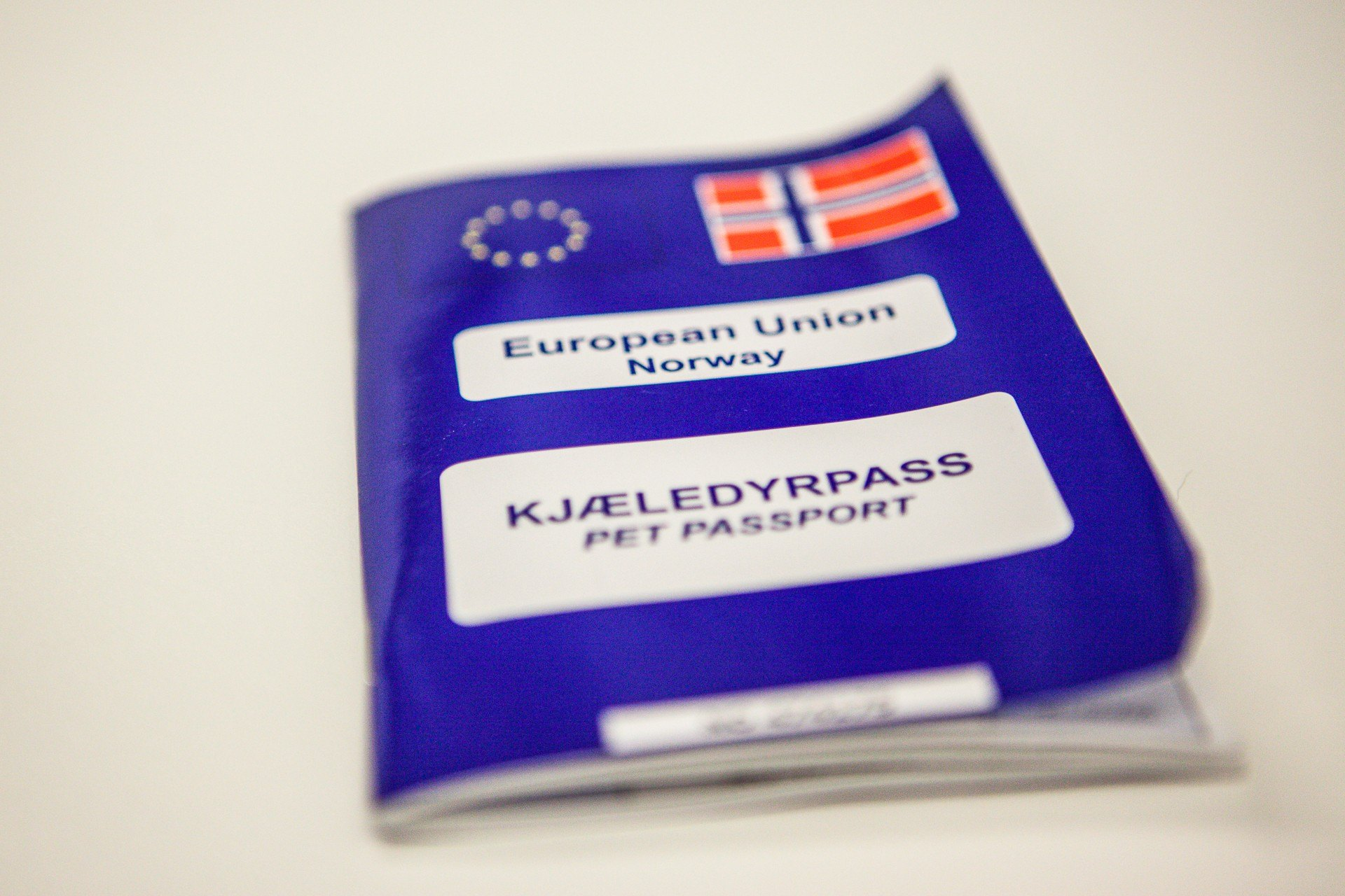 EU-pass til hund